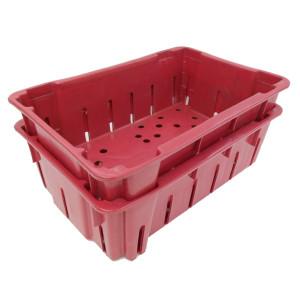 Caja-Numero-4 Funsión Anidado.